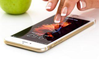 fot. bank zdjęć pixaby.com
