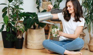 Poznaj 5 aplikacji, które pomogą Ci dbać o rośliny doniczkowe